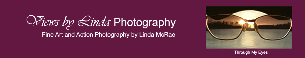 Views by Linda Photography - Fine Art and Action Photography by Linda McRae